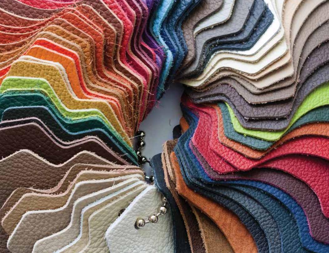 Leather-industry-africa-botswana
